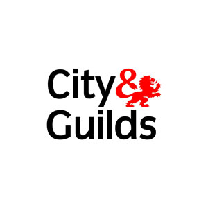 city_and_guilds_opt
